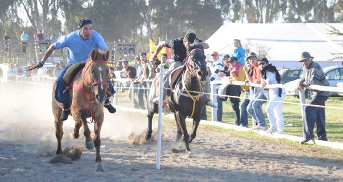 Deporte típico del campo Chileno