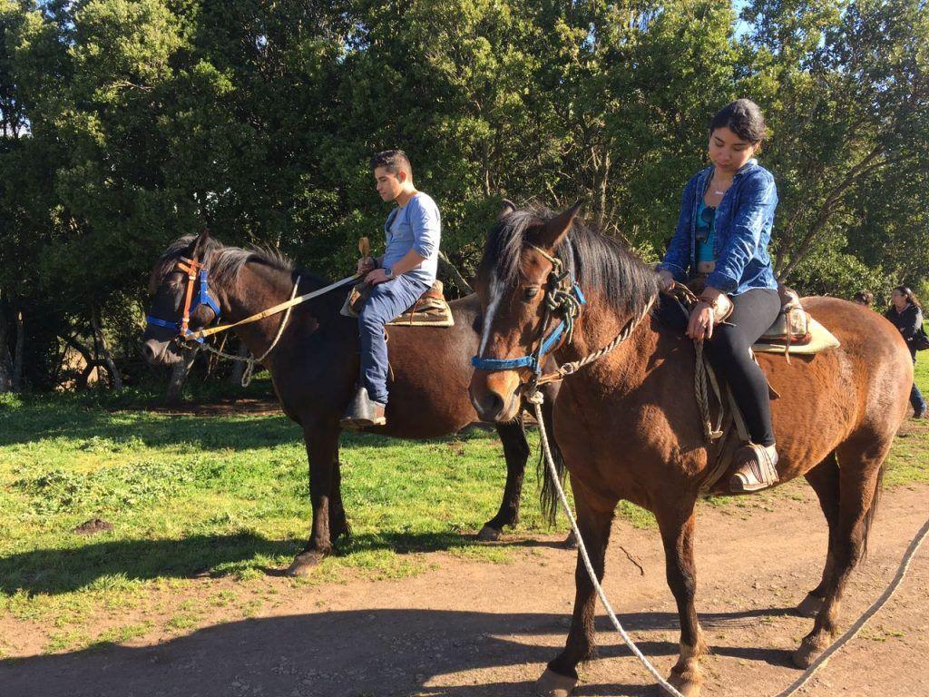 Paseos de a caballo