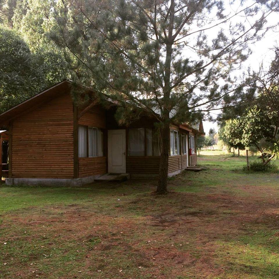 Cabañas Bosque Nativo